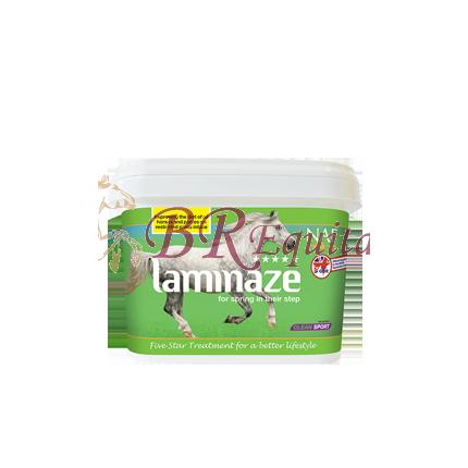 LAMINAZE (fourbure)