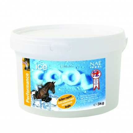 ICE COOL ARGILE